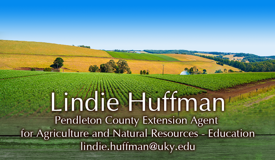 Ag Agent Lindie Huffman